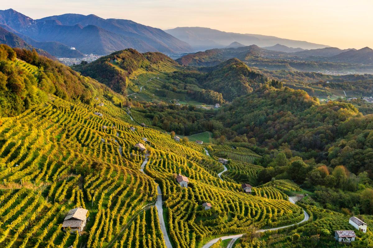 Az egyik legkülönlegesebb prosecco hazája: Conegliano-Valdobiaddene | Forrás: wine.it