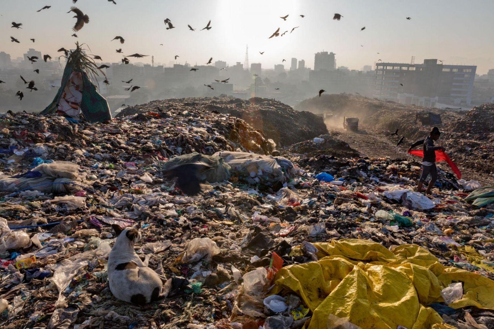 Évente Legalább 50 Ezer Műanyagrészecskét Esznek Meg Az