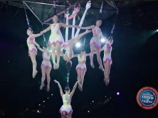 Tragédiába torkollott egy cirkuszi bemutató (VIDEÓ)